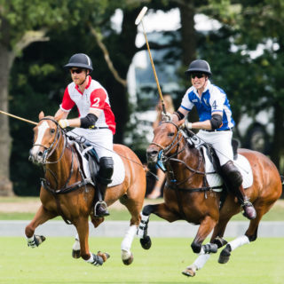 William e Harry: la lite alla partita di polo