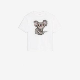 Incendi in Australia: anche Balenciaga in difesa dei Koala