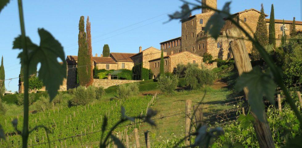 Louis Vuitton vuole comprare Castello Banfi