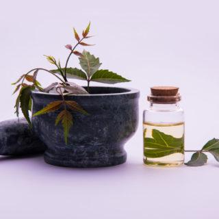 Olio di Neem: un toccasana per la pelle