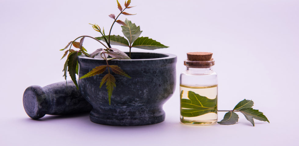 Olio di Neem: a cosa serve e le proprietà