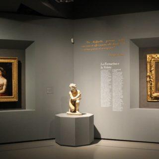 Raffaello 1520-1483: la mostra continua online