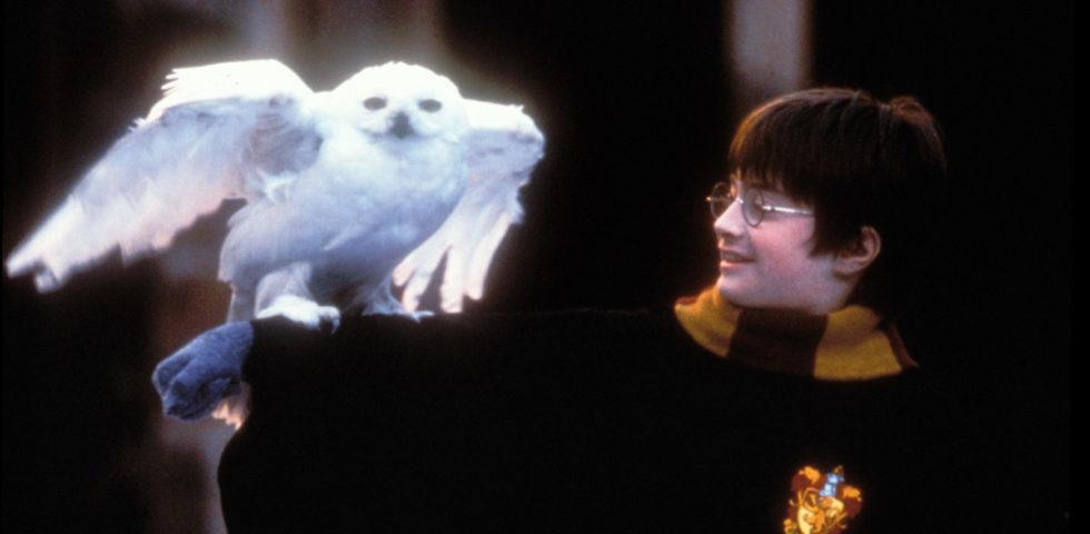 Harry Potter e la pietra filosofale: 23 anni dal primo libro della saga