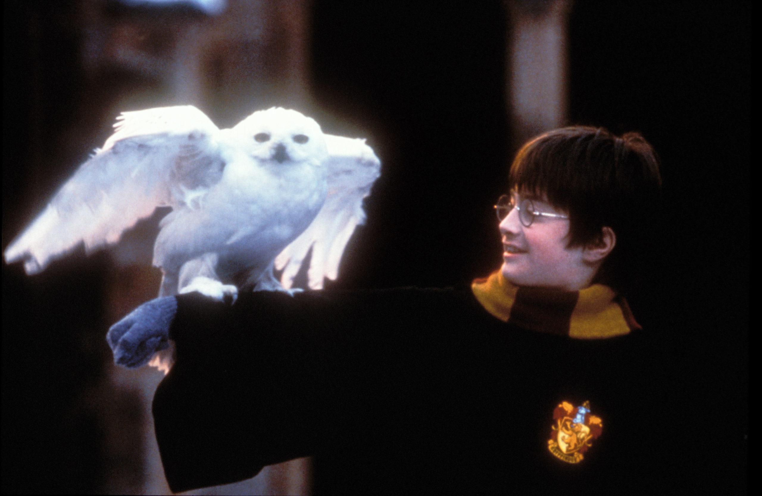 Coronavirus: J.K. Rowling lancia il sito gratuito Harry Potter at Home