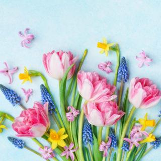 Fiori per la Festa della mamma: guida ai significati