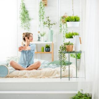 Come disporre le piante per creare un angolo green perfetto