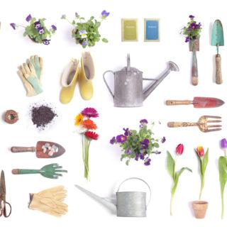 Attrezzi da giardino: gli indispensabili