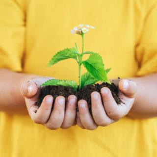 Giardinaggio per bambini: idee e attività da 2 a 6 anni