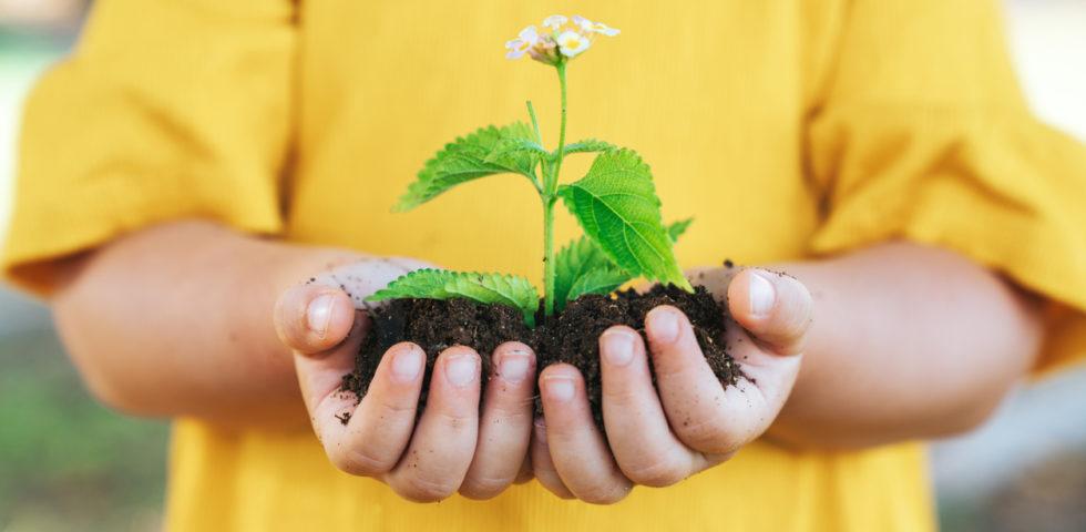 Come fare giardinaggio con i bambini: idee e attività