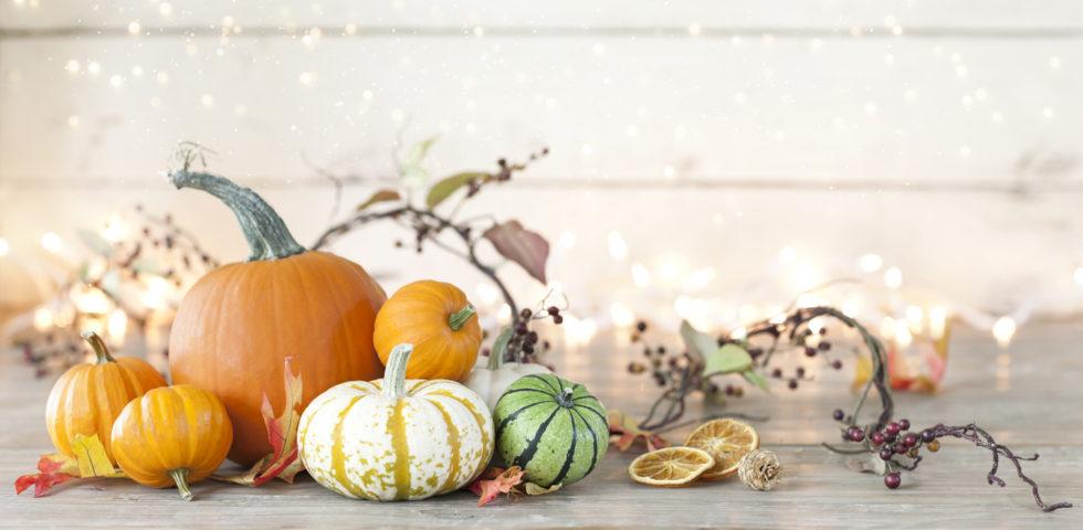 Zucche ornamentali: come seccarle e conservarle