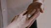 Breaking Dawn parte II: immagini dal trailer 2 8