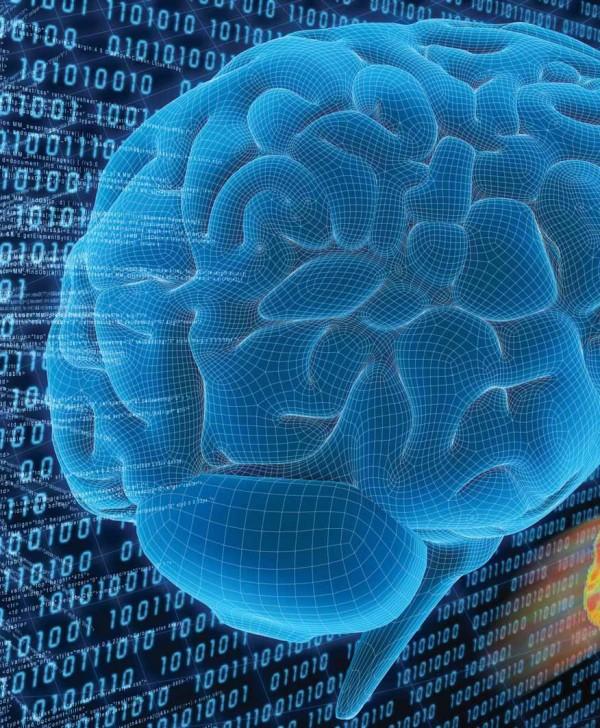 Cervello e memoria 2