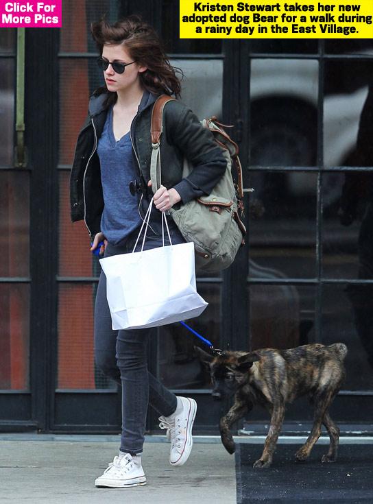 Kristen Stewart a NY con Bear 2