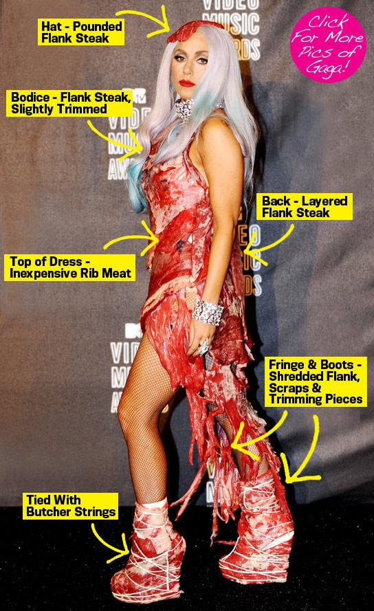 Lady Gaga: meat dress 2