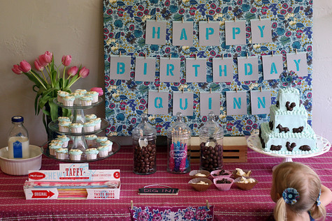 Baby party 4